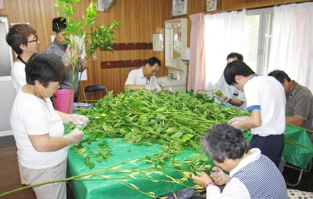 内職作業(野菜・縫製・自動車部品)